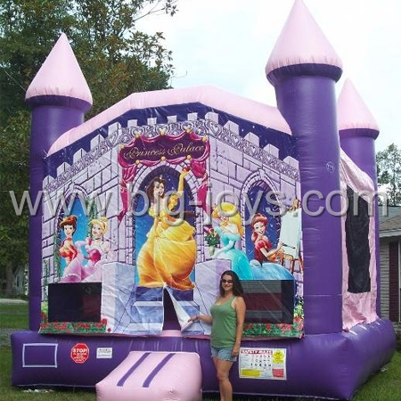 inflatable princess bouncer,inflatable purple bouncer for sale